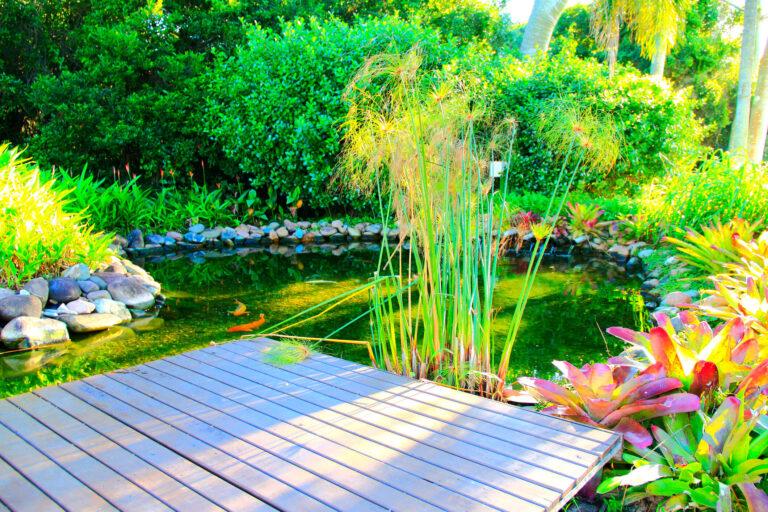 Einen Gartenteich anlegen. 7 Super einfache Tipps und Tricks 1